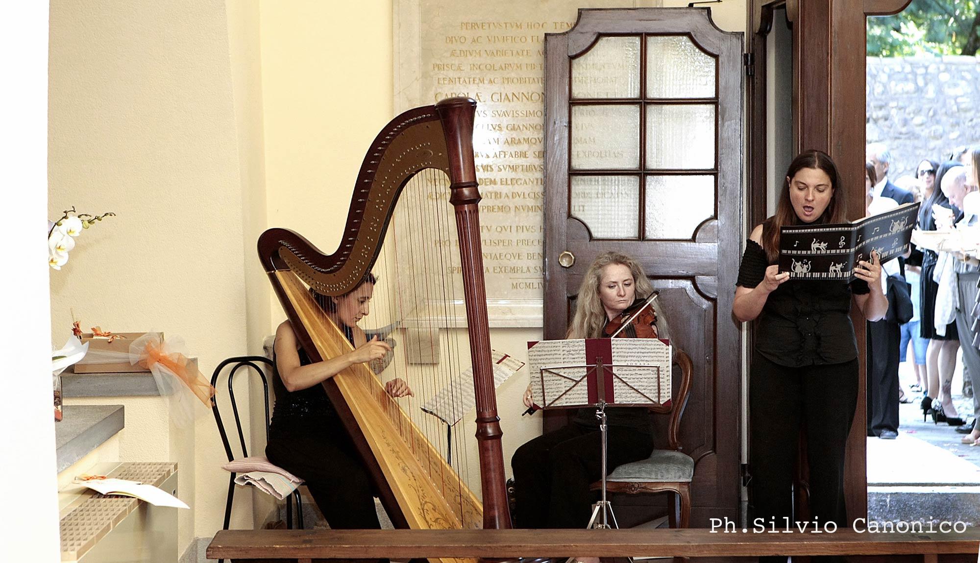 MUSICI 5